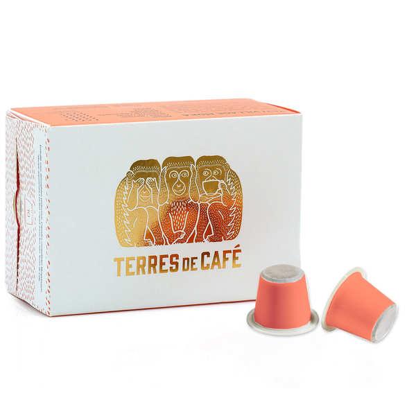 Terres de Café Café Ethiopie Moka Yeti bio - capsules compatibles Nespresso® - Boîte de 10 capsules