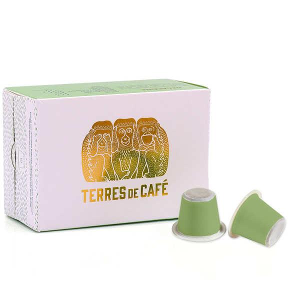 Terres de Café Décaféiné Mexique bio - capsules compatibles Nespresso® - Boîte 10 capsules