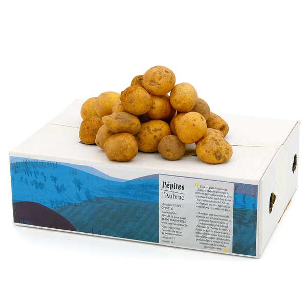 Pépites de l'Aubrac Pommes de terre bio de l'Aubrac Grenailles - variété Monalisa - Carton 2,5 kg
