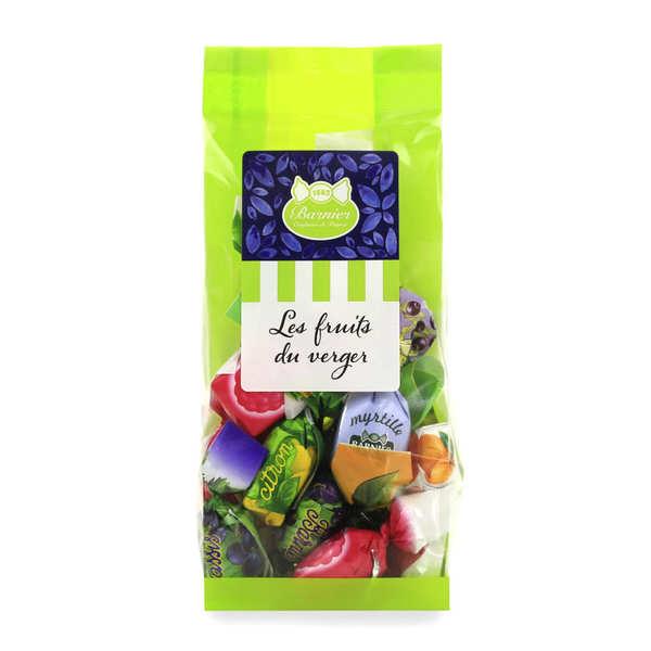 Bonbons Barnier Bonbons fourrés gourmands - Assortiment Fruits du Verger - Sachet 100g