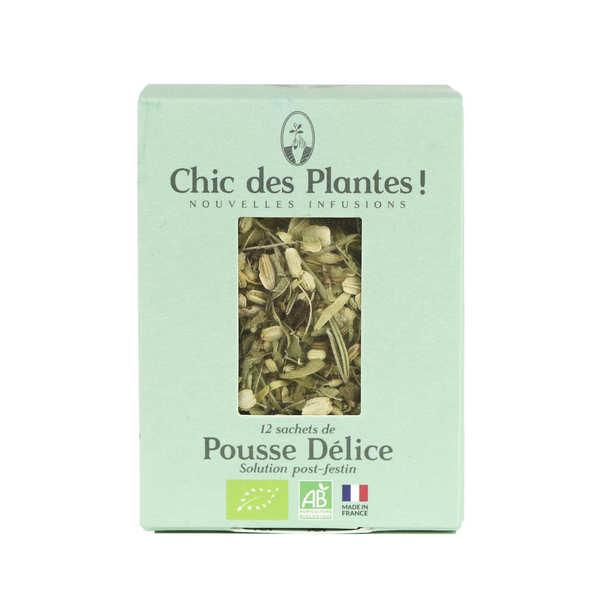 Chic des plantes ! Infusion bio Pousse délice - Boîte de 12 sachets