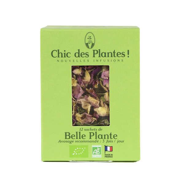 Chic des plantes ! Infusion bio Belle plante - Boîte de 12 sachets