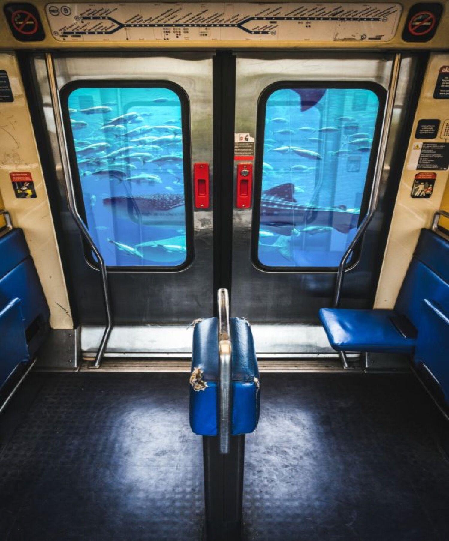 Pixopolitan RER BOCAL - Photo de Mathieu Alemany 40x60 cm