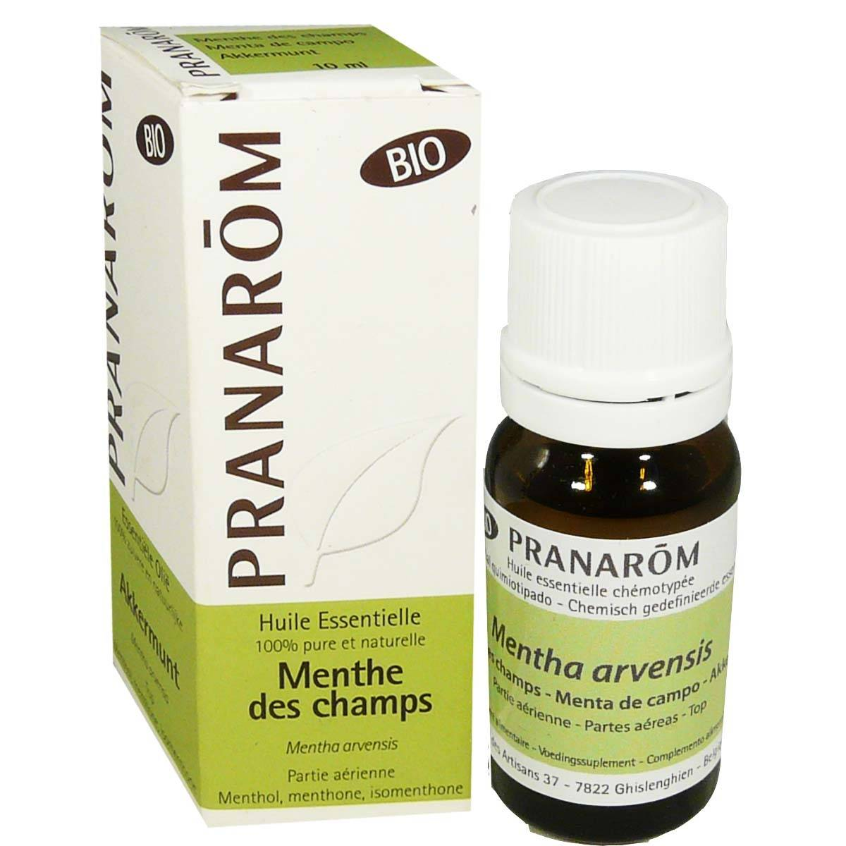 Pranarom huile essentielle menthe des champs bio 150 mg