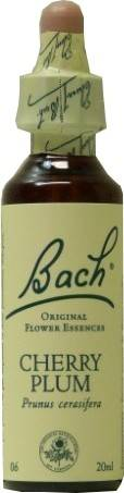 FLEUR BACH FAMADEM Elixirs & co fleurs de bach elixir cherry plum n° 6 20ml