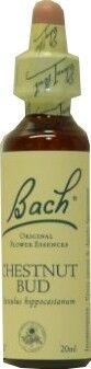 FLEUR BACH FAMADEM Elixirs & co fleurs de bach elixir chestnut bud n° 07 20ml