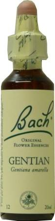 FLEUR BACH FAMADEM Elixirs & co fleurs de bach elixir gentiane n° 12 20ml