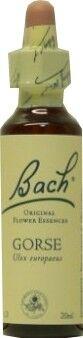 FLEUR BACH FAMADEM Elixirs & co fleurs de bach elixir gorse n° 13 20ml