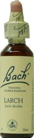 FLEUR BACH FAMADEM Elixirs & co fleurs de bach elixir larch n° 19 20ml
