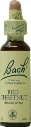 FLEUR BACH FAMADEM Elixirs & co fleurs de bach elixir red chestnut n° 25 20ml