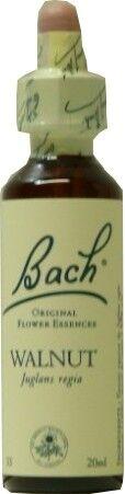 FLEUR BACH FAMADEM Elixirs & co fleurs de bach elixir walnut n° 33 20ml
