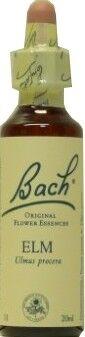 FLEUR BACH FAMADEM Fleurs de back elixir elm n° 11 20ml