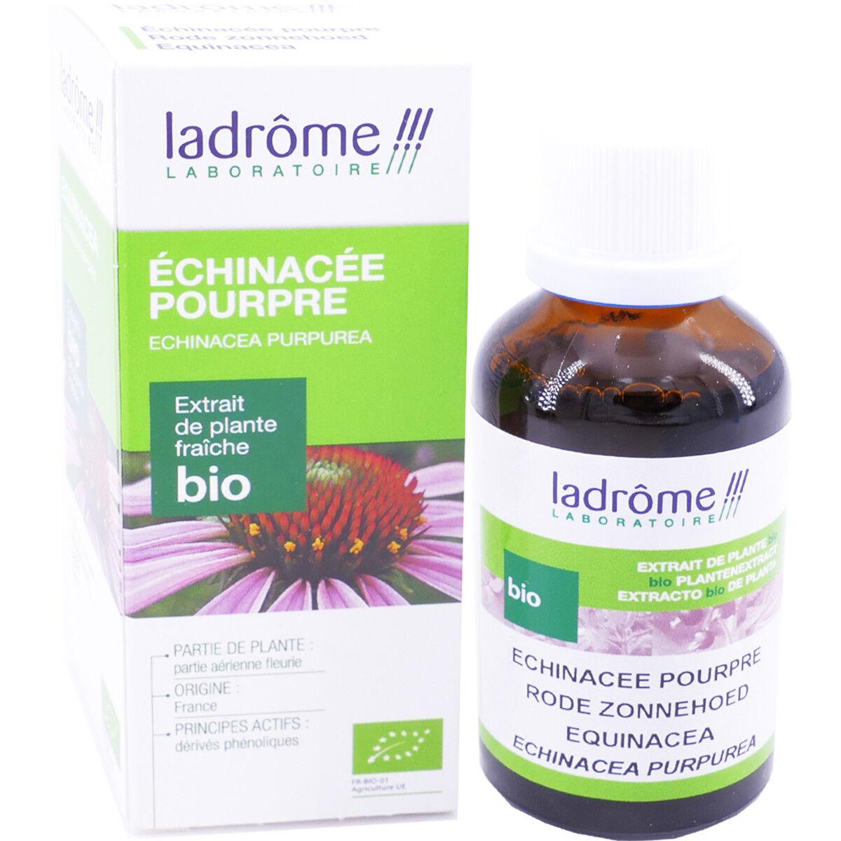 Ladrome echinacee pourpre bio 50 ml