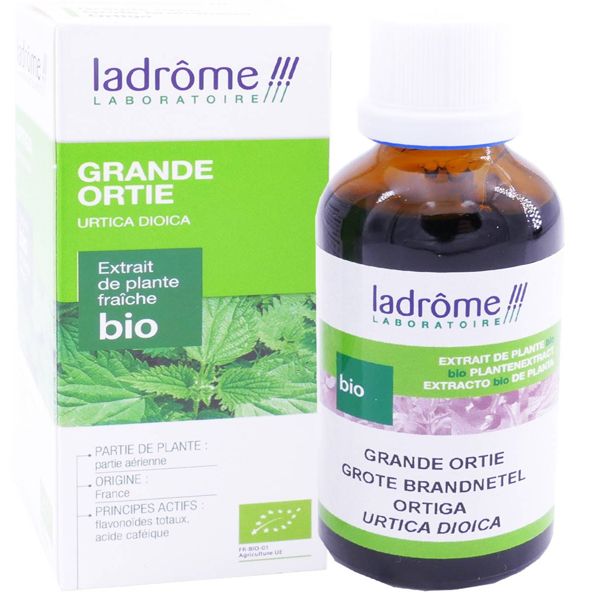 Ladrome grande ortie bio 50 ml extrait de plante fraiche
