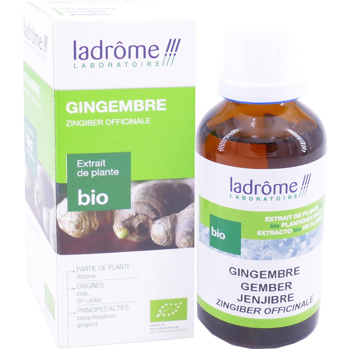 Ladrome gingembre bio 50 ml