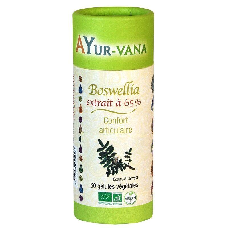 Ayur-Vana Boswellia extrait à 65 % bio Vegan