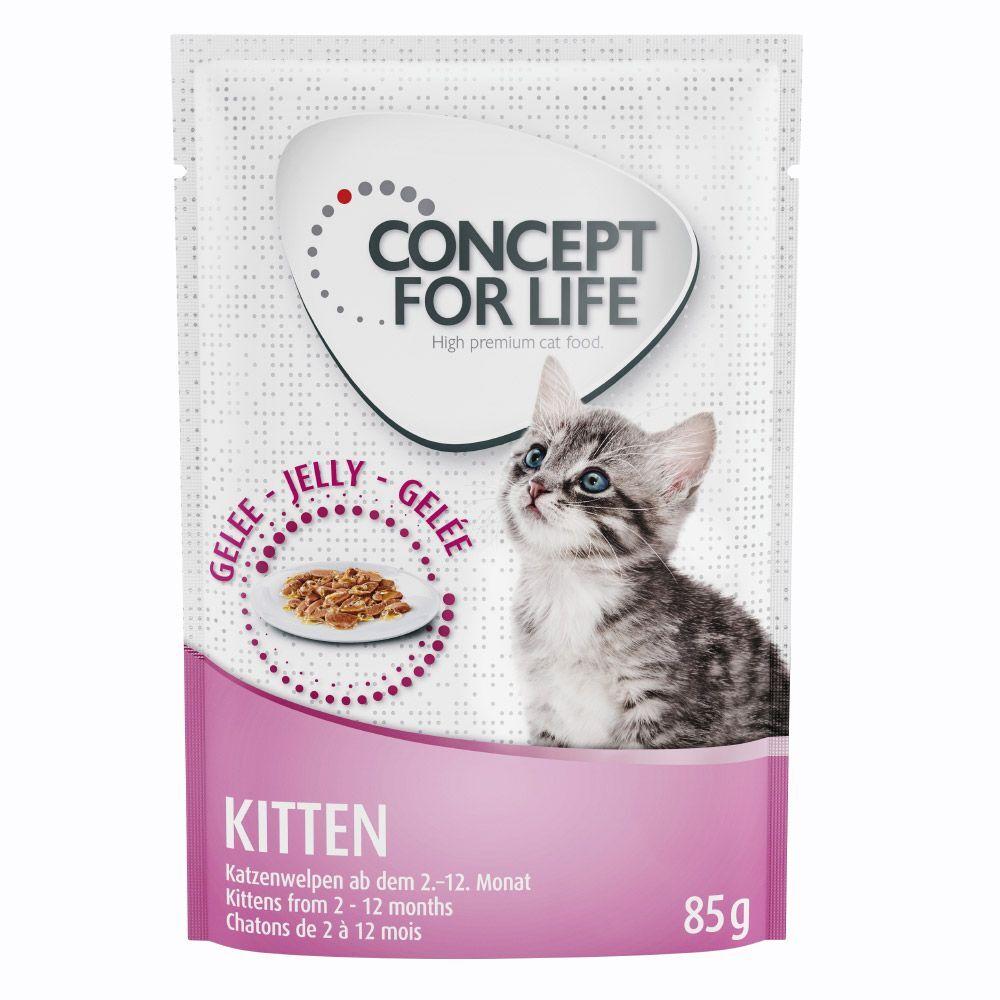 Concept for Life 48x85g Kitten en gelée Concept for Life - Pâtée pour Chat