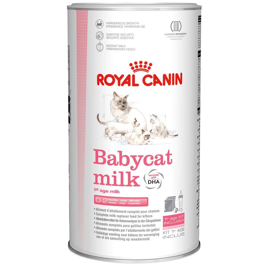 Royal Canin Lait maternisé pour chatton Royal Canin Babycat Milk Contenance : 300 g