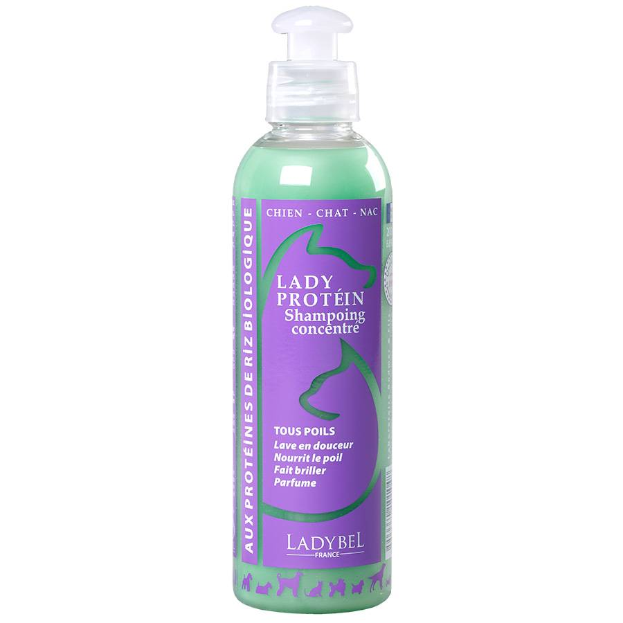 Ladybel Shampooing Ladybel Lady Protéin Contenance : 200 ml
