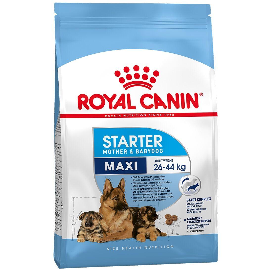 Royal Canin Maxi Starter Contenance : 4 kg