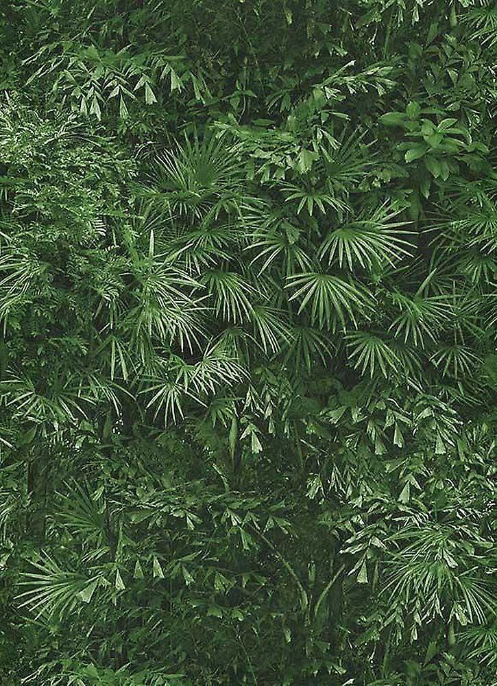 Erismann La forêt tropicale feuille Jungle papier peint feuilles texturées coller mur vinyle Erismann