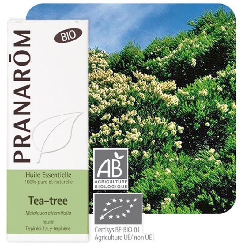 Pranarôm Tea tree Bio (Arbre à thé) - Huile essentielle de Melaleuca alternifolia 10 ml - Pranarôm