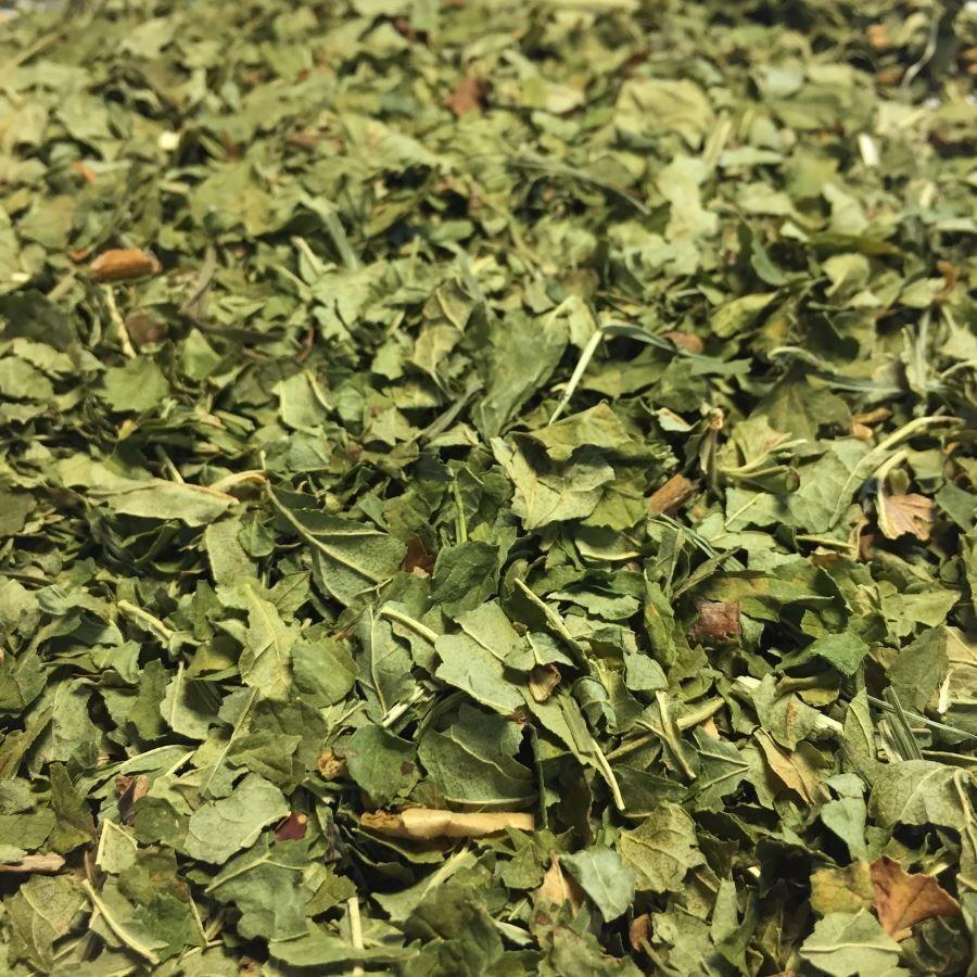 Louis Cassis Bio - Feuilles brisures 100g - Tisane de Ribes nigrum