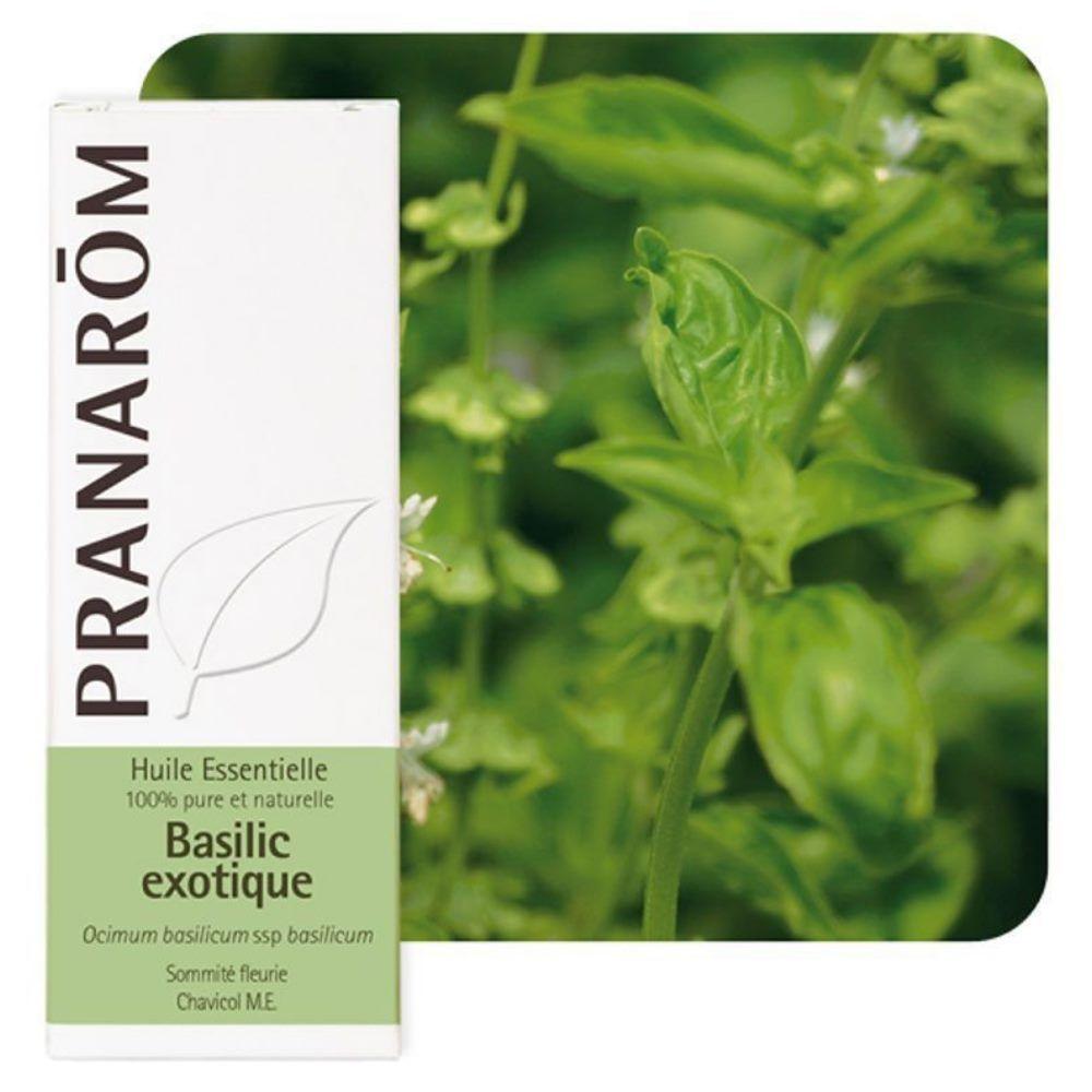 Pranarôm Basilic Exotique - Huile essentielle Ocimum basilicum 10 ml - Pranarôm