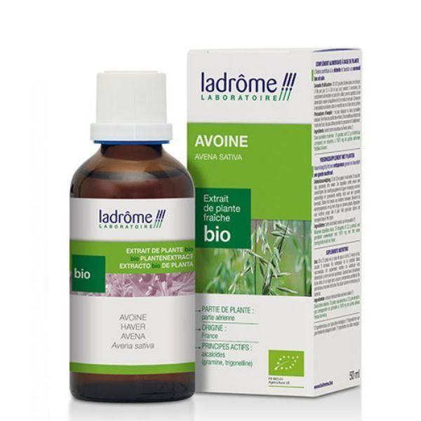 Ladrôme Avoine Bio - Tonus & Vitalité Teinture-mère Avena sativa 50 ml - Ladrôme