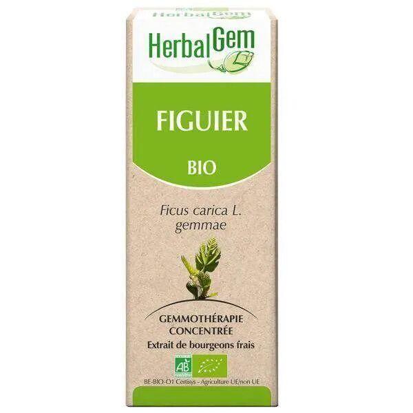 Herbalgem Figuier bourgeon Bio - Stress et digestion 50 ml - Herbalgem