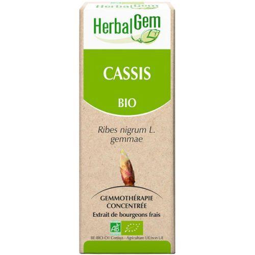 Cassis Bio - Extrait de bourgeons frais - 50 ml