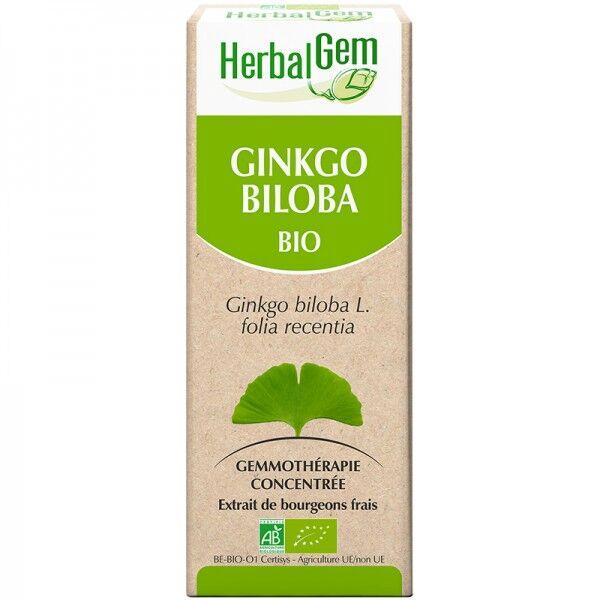 Ginkgo Biloba Bio - Extrait de bourgeons frais - 50 ml
