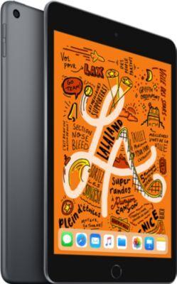 Ipad Tablette IPAD Mini 7.9'' 256Go Gris Sidé