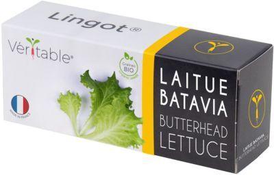 Veritable Recharge VERITABLE Laitue Batavia BIO