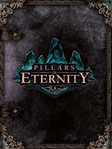 Paradox Interactive Pillars of Eternity (Hero Edition) Steam Key GLOBAL