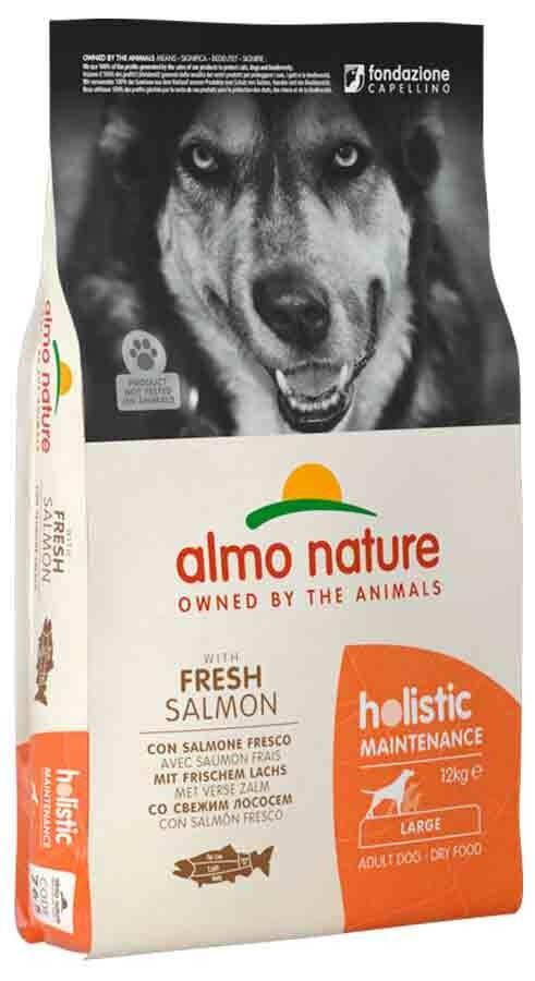 Holistic Almo Nature Holistic Chien Adult Large Saumon frais 12 kg