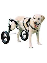Canis Mobile Chariot Canis Mobile pour chien paralysé du train arrière GM