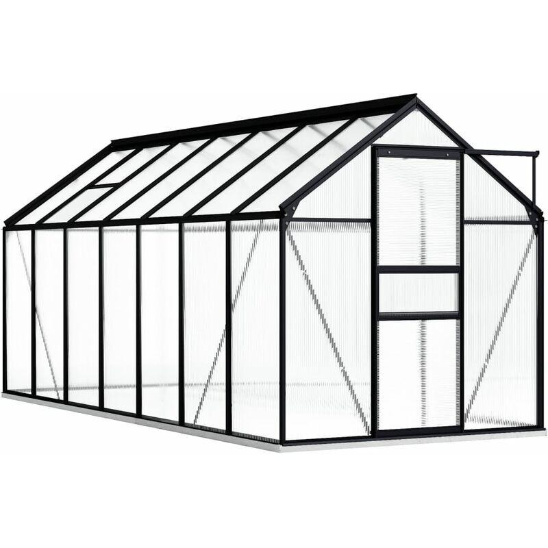 Youthup - Serre avec cadre de base Anthracite Aluminium 8,17 m2