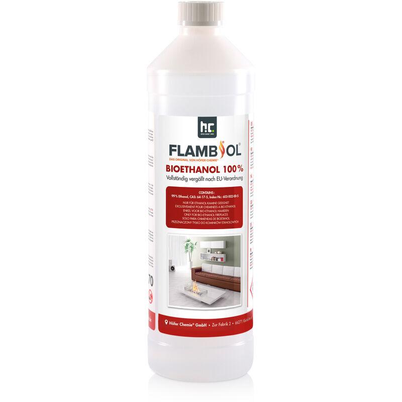 HöFER CHEMIE 15 x 1 Litre Bioéthanol à 100% dénaturé en bouteilles de 1 l - HöFER