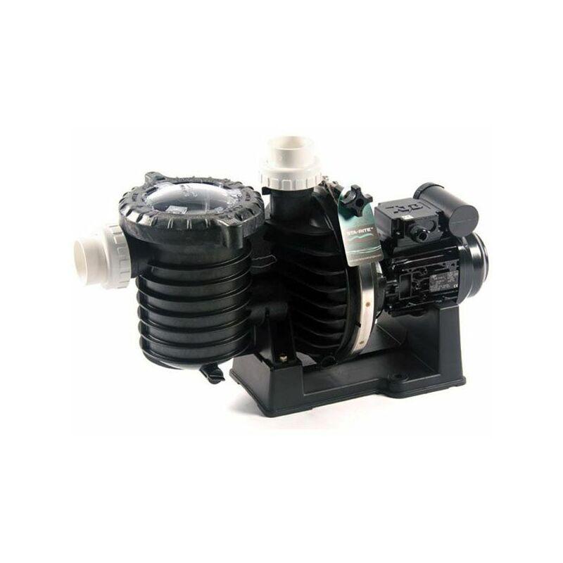 STA RITE pompe à filtration 1.5 cv 22m3/h mono eau de mer - sw5p6rf-1 - sta rite