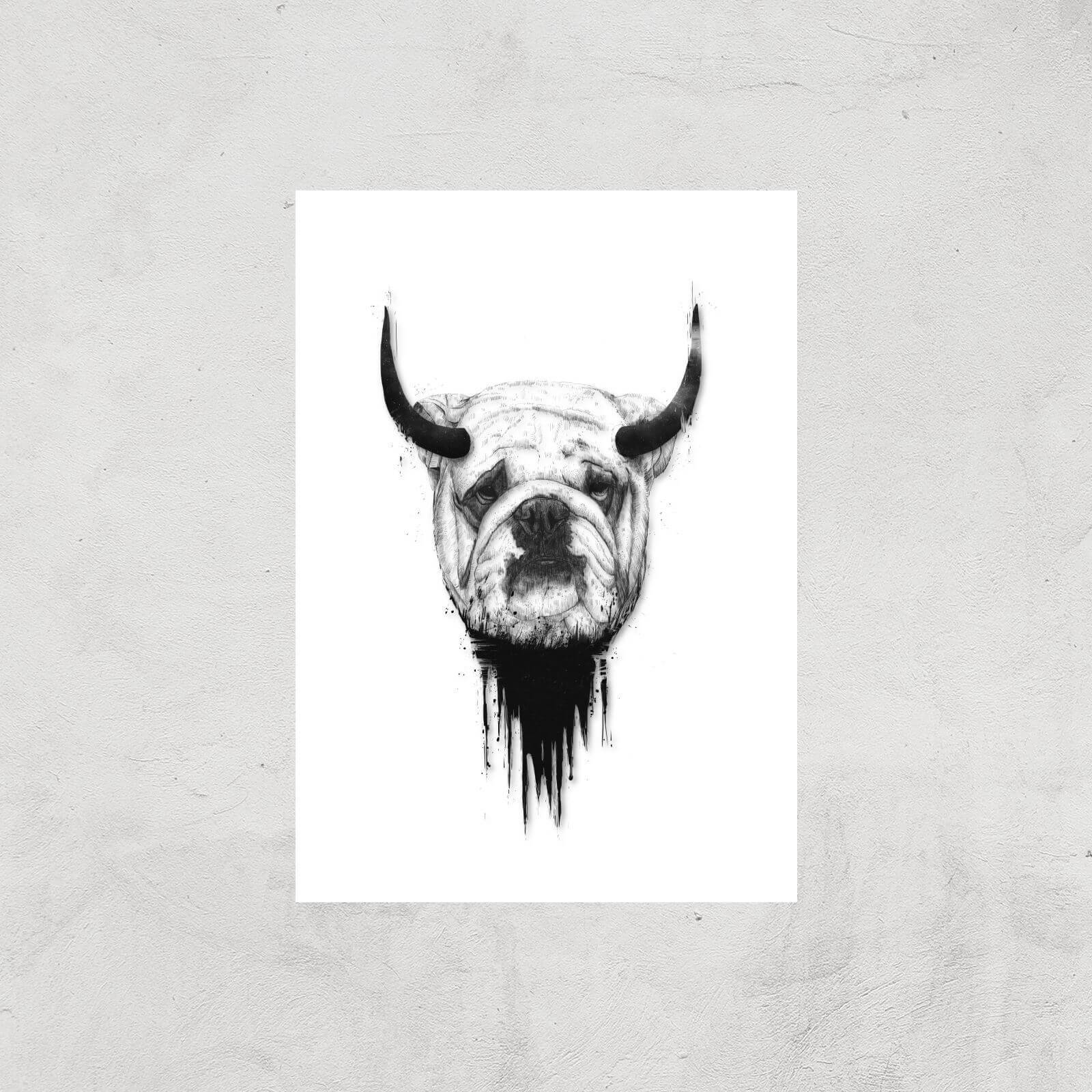 Balazs Solti English Bulldog Art Print - A4 - Print Only
