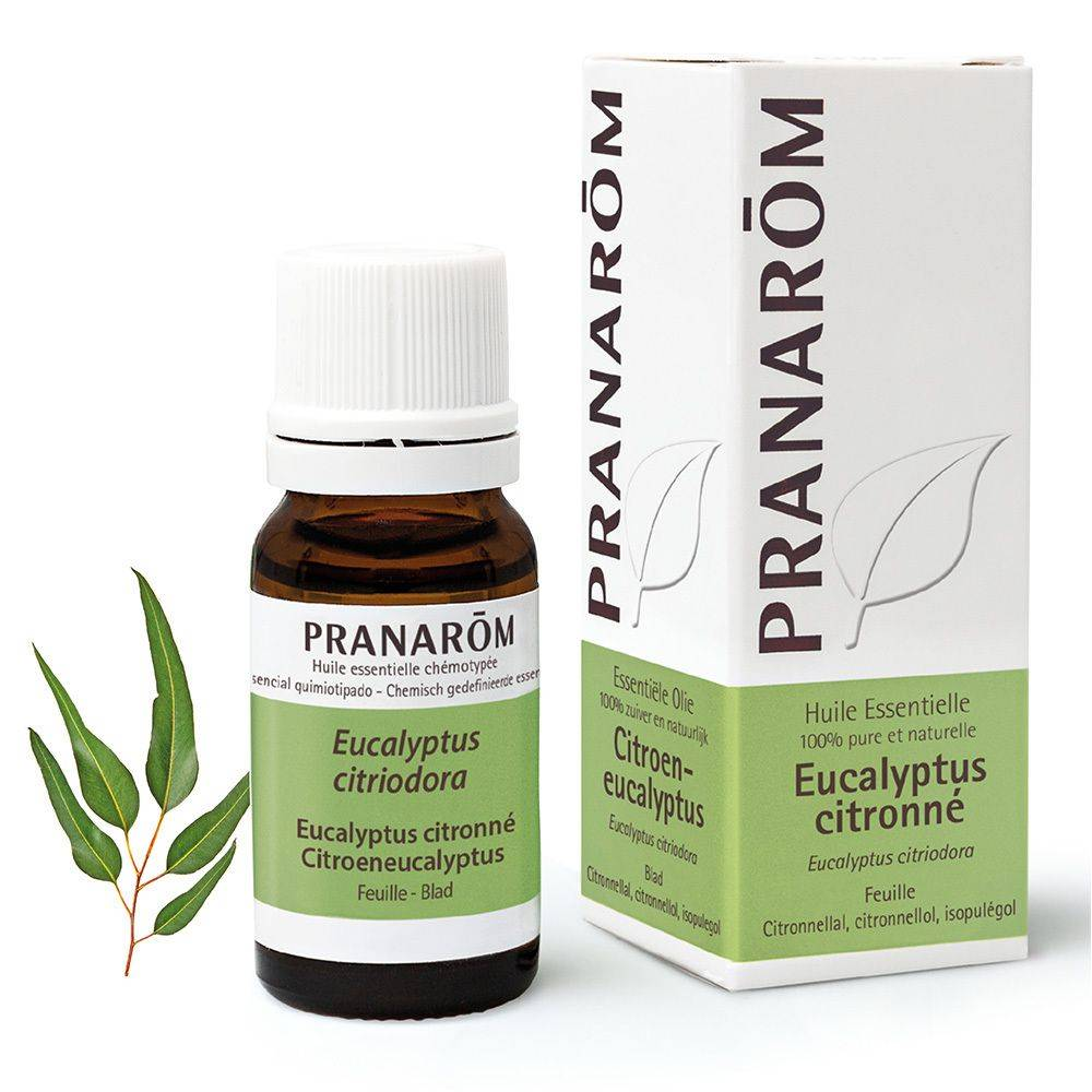 Pranarôm Pranarom huile essentielle Eucalyptus citronné (Eucalyptus citriodora) ml huile