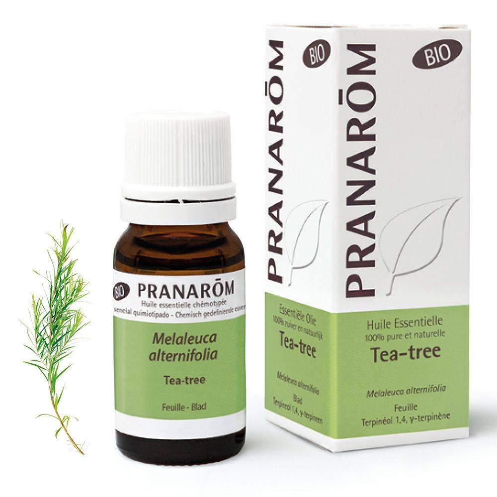 Pranarôm Pranarom Tea Tree (Arbre à thé) Huile essentielle Bio ml huile