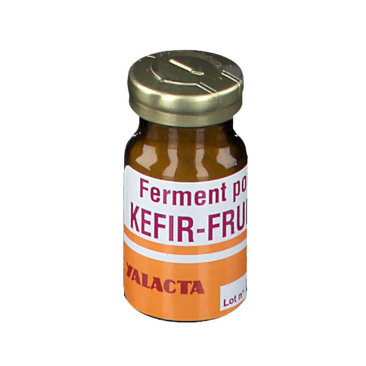 Yalacta Kefir Fruit g poudre