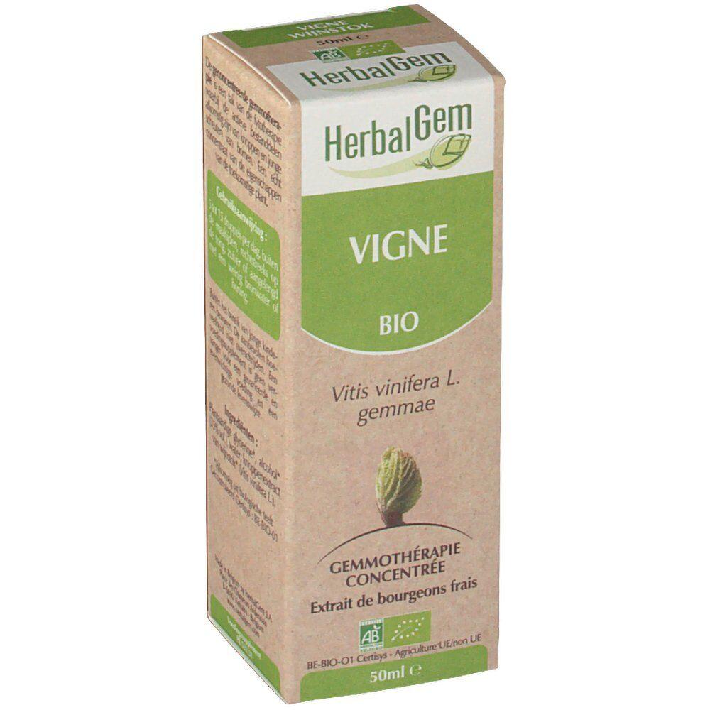 Herbalgem Vigne Bio ml goutte(s)