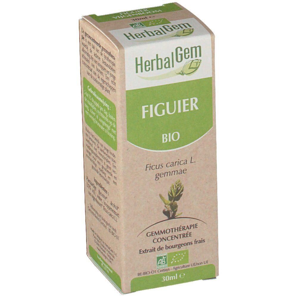 Herbalgem Figuier Bio ml