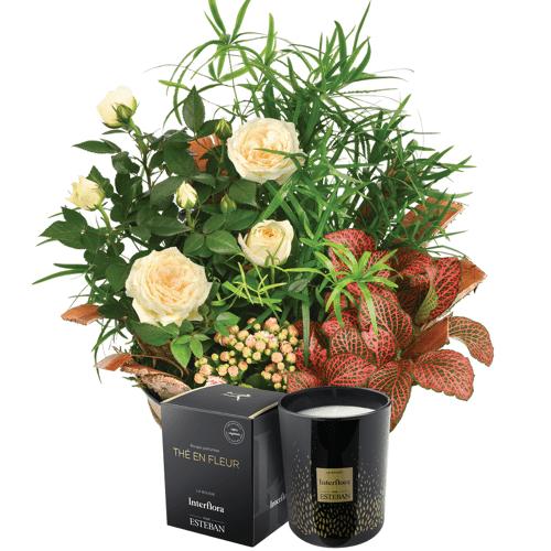 Interflora Cadeau Anniversaire :...