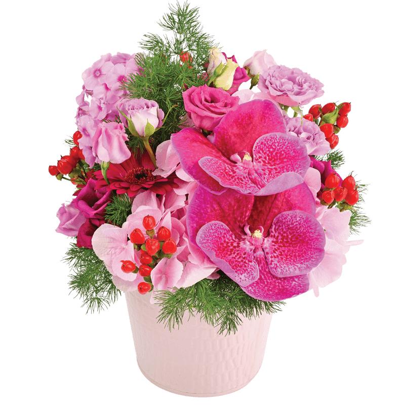 Interflora Idée Cadeau Anniversaire - Composition Cupcake - Livraison Fleurs Interflora