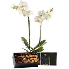 Interflora Candide et ses amandes au chocolat