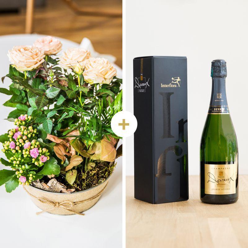 Interflora Livraison Fleurs et Champagne - Cadeau Anniversaire livré en 4H - Interflora